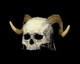 Bone Visage [Helms]